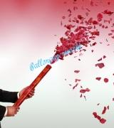 Rosenblätter-Regen, Rosenblätterkanone, große Konfettikanone mit Rosenblättern