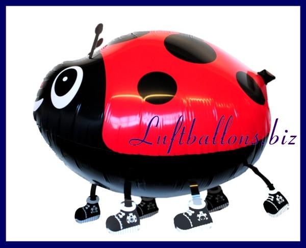marienk fer tier luftballon ohne helium lu airwalker luftballon marienkaefer r 8930 oh. Black Bedroom Furniture Sets. Home Design Ideas