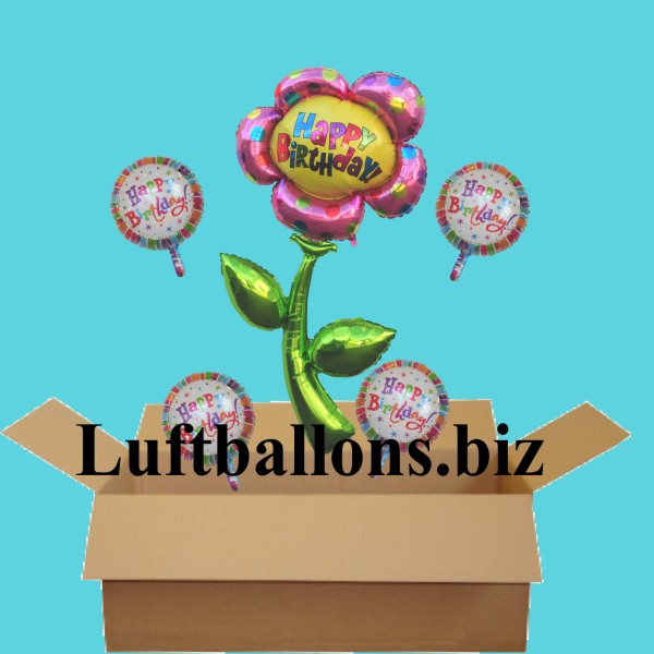 geburtstagsgeschenk luftballons mit helium im karton happy birthday blume lu luftballons. Black Bedroom Furniture Sets. Home Design Ideas