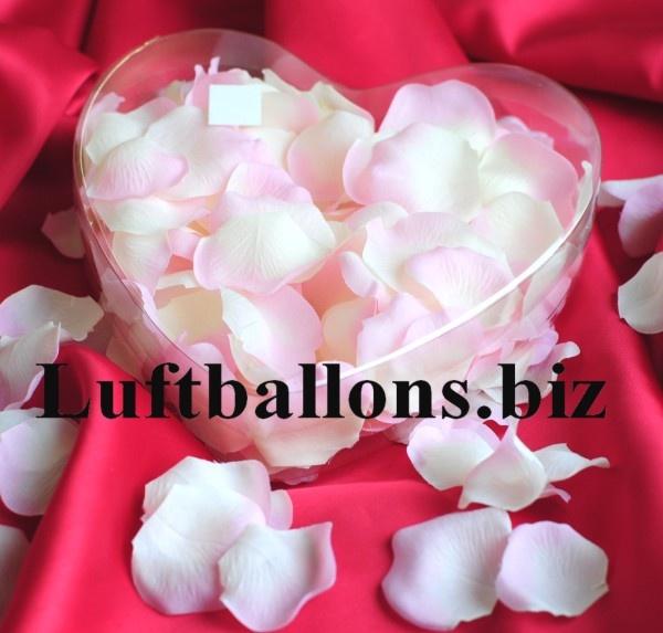Rosenblätter in Creme-Rose, 200 Stück in dekorativer Herzbox