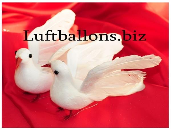 Taubenpaar, 2 Hochzeitstauben in Weiß zur Hochzeitsdekoration