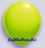 Deko-Luftballons, Standardfarben, Limonengrün, 75/85 cm, 100 Stück, Serie 2