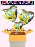 Tinkerbell Holo Herzluftballons mit Helium, Kindergeburtstag Geschenke, 3 Stück